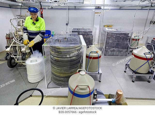 Liquid Nitrogen Refilling, Germanium Detectors, The Laboratorio Subterraneo de Canfranc (LSC) has been excavated in the rock 800 m deep under the Mount Tobazo...