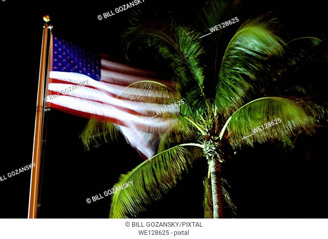 Motion Blur of American Flag and Palm Tree - Pompano Beach, Florida USA
