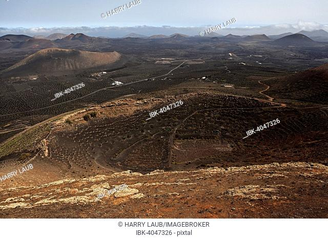 View from the Montaña de Guardilama range north on the wine growing region of La Geria and volcanic landscape with volcanic mountains, Lanzarote, Canary Islands