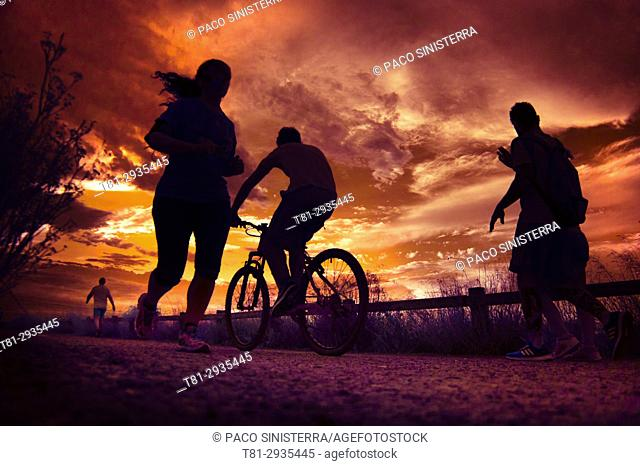 Silhouettes of people doing sports in Marseille, France
