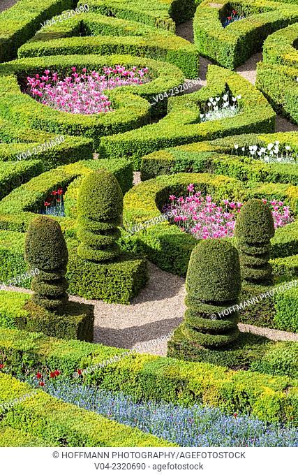 The beautiful gardens in the Château de Villandry (Villandry Castle) in the Loire Valley, Indre-et-Loire, France, Europe