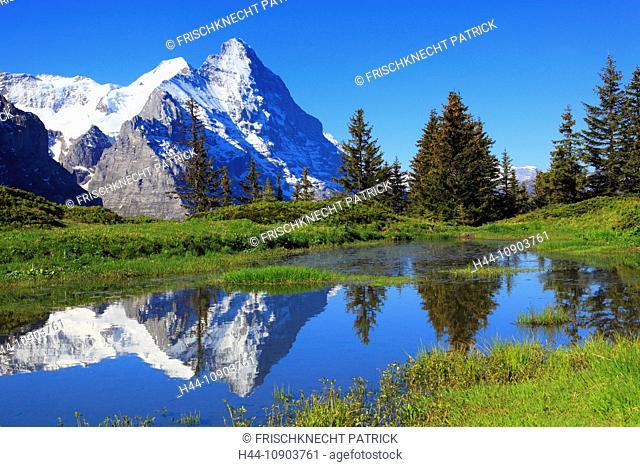 Eiger and Mönch mountains, Bernese Alps, Switzerland