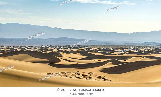 Mesquite Flat Sand Dunes, sand dunes, foothills of the Amargosa Range Mountain Range behind, Death Valley, Death Valley National Park, California, USA