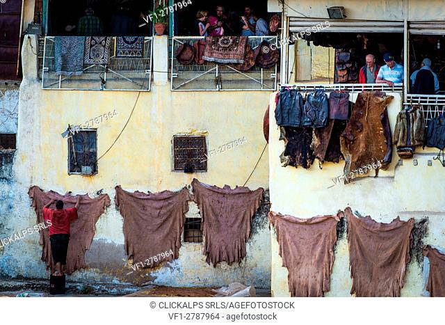 Fes, Marocco, North Africa. The stretched out of the leathers to dry