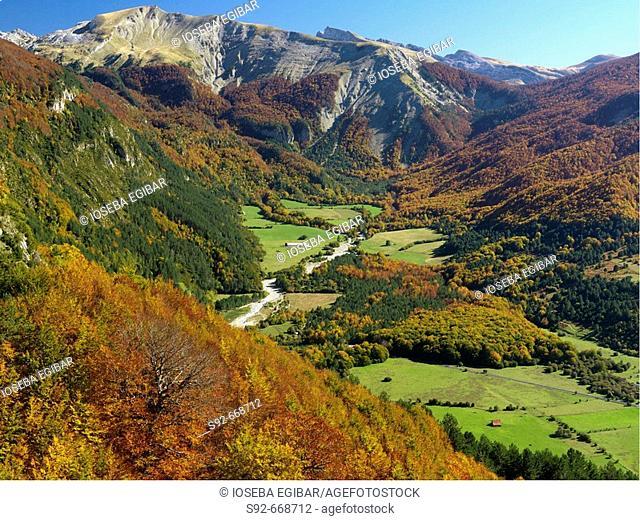 Belagoa Valley, Pyrenees, Navarre, Spain