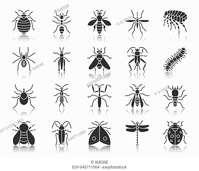 Danger Insect silhouette icons set. Monochrome web sign kit of bugs. Beetle pictogram collection includes mite wasp, gnat mosquito