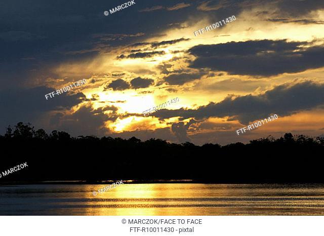 Sunset at the lake, Ubim lake, Amazonas, Brazil