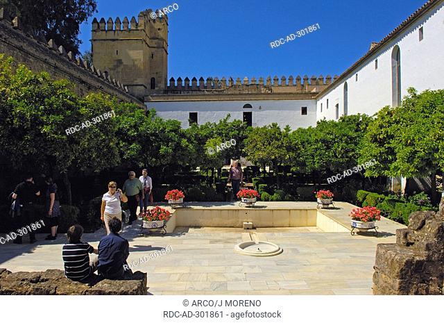 Inner courtyard, Alcazar de los Reyes Cristianos, Cordoba, Andalusia, Spain / Alcazar of the Christian Monarchs, Alcazar of the Catholic Kings