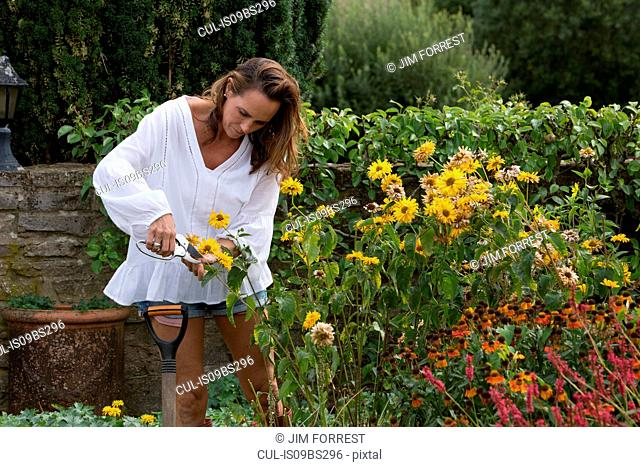 Woman working on garden