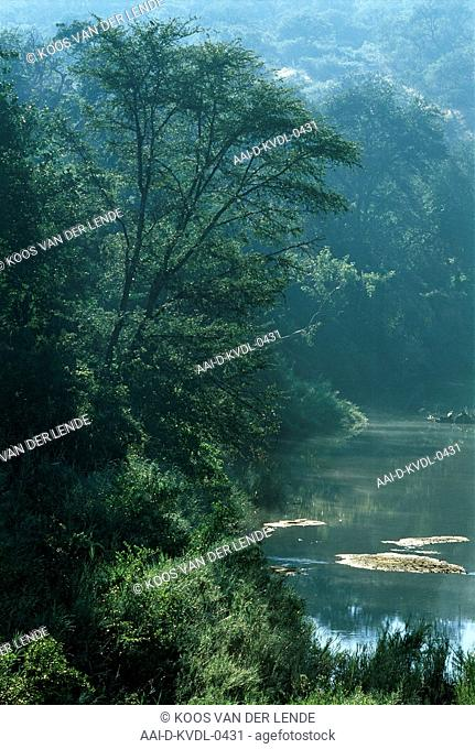 Makhutswi River, Lowveld, South Africa