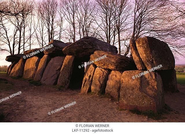 Prehistoric rock formations, Dolmen, La Roche aux FÚes, Ile et Vilaine, Bretagne, France