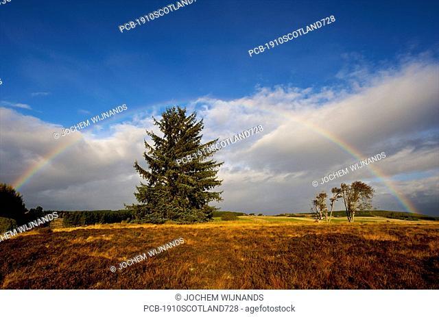 Scotland, autumn rainbow