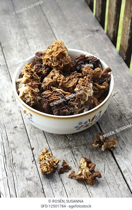 Fresh morels in a bowl