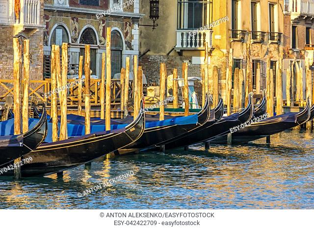 Gondolas moored in the Grand Canal of Venice, Italy