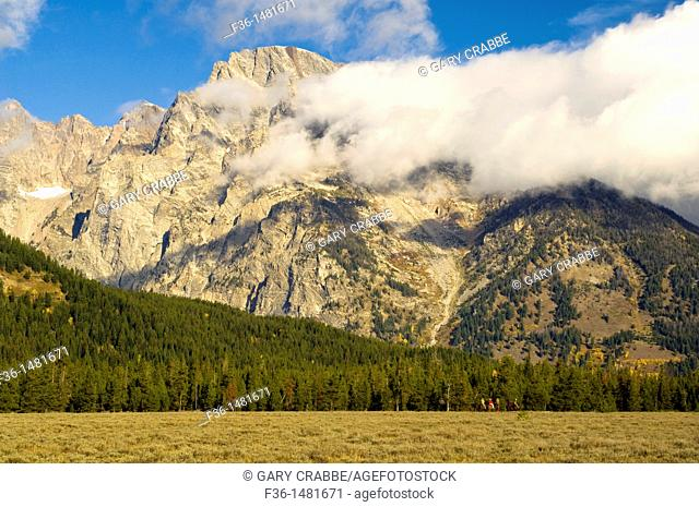 Tourists riding horseback on horse tour below Mount Moran mountain, Grand Teton National Park, Wyoming