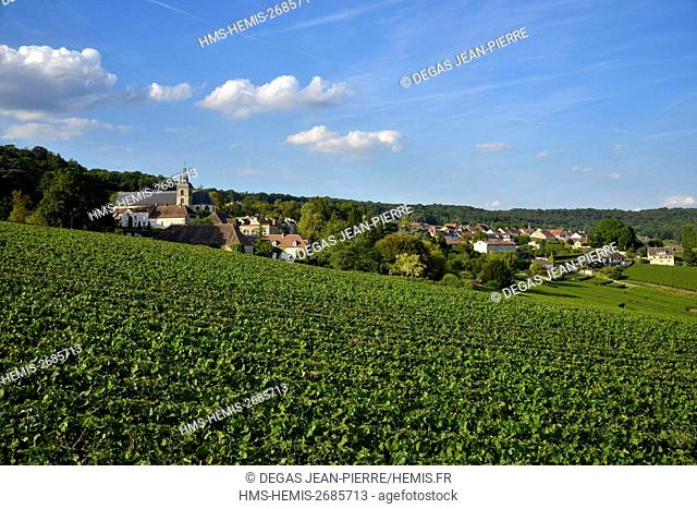 France, Marne, Hautvillers, Marne Valley, vineyard in champagne listed Premier Cru and listed as World Heritage by UNESCO with the Abbey Saint Peter of...