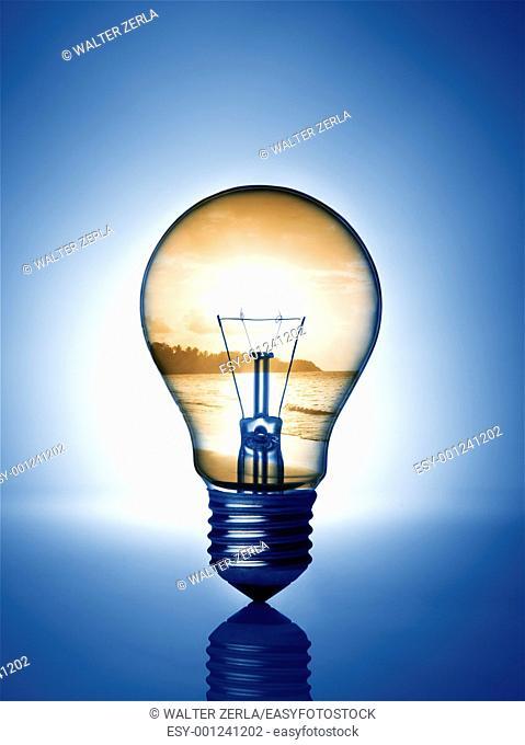 light bulb whit sunset