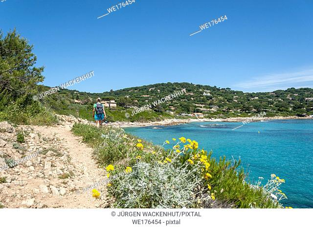 Coastel walk Sentier du Littoral at the beach of l'Escalet, Ramatuelle, Var, Provence-Alpes-Cote d`Azur, France, Europe