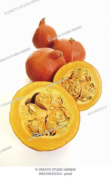 Hokkaido-pumpkins in a row