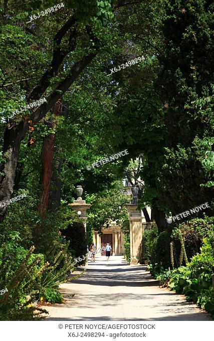 Tree lined path to Maison de Sante Saint Paul at Saint Remy