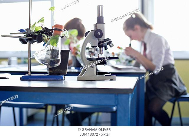 Microscope and plant in beaker in high school science laboratory