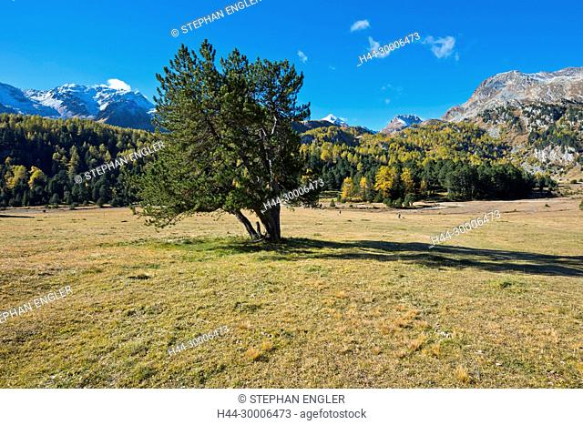 Switzerland , Ticino Tessin, Val du Blenio