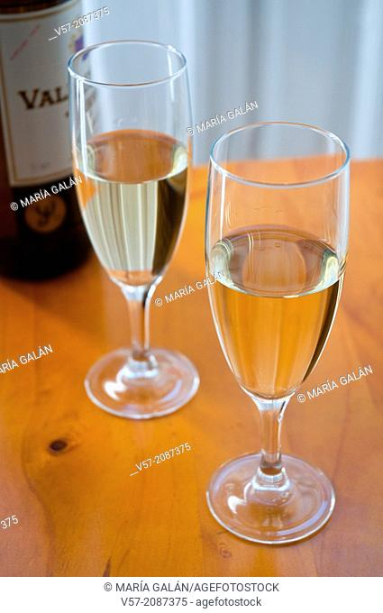 Two glasses of Sherry wine. Jerez, Andalucia, Spain