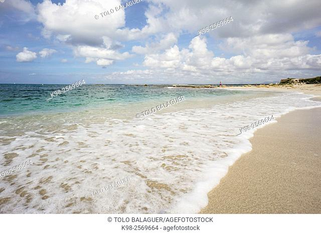 Spain, Balearic Islands, Mallorca, Las Salinas, Colonia de Sant Jordi, Estanys beach, Rear view of young woman wading in sea