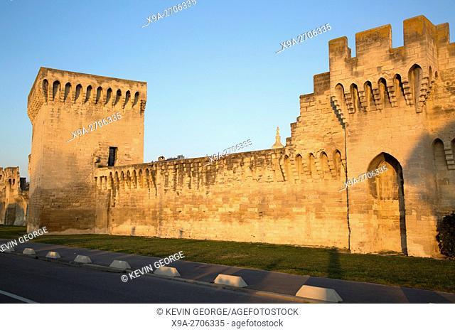 Detail on City Walls, Avignon, France