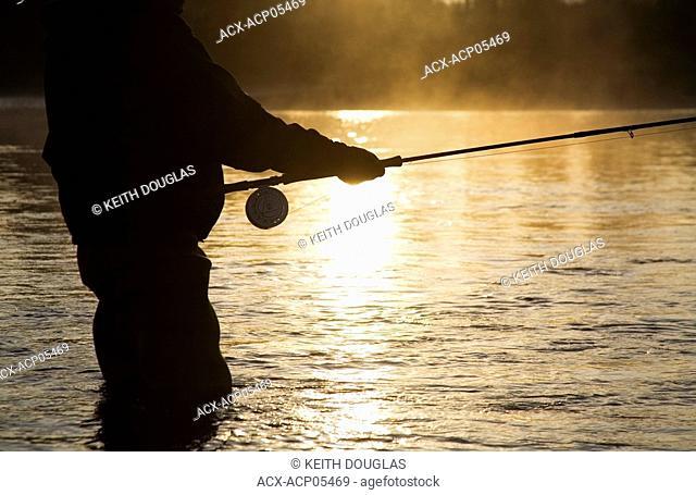 Flyfisherman at sunsrise, Bulkley river, Smithers, British Columbia, Canada