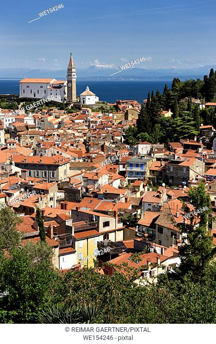 Aerial view of Piran Slovenia with St George's Cathedral on the Gulf of Trieste with snow capped Kanin mountains and distant Monfalcone Italy