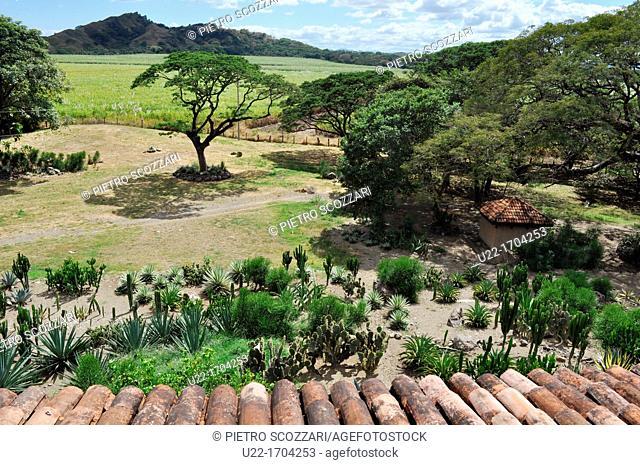 near Filadelfia Costa Rica: Hacienda El Viejo