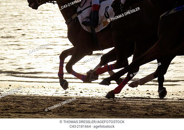 Detail during the famous horse races of Sanlúcar de Barrameda which take place every year during August along a 1.800m stretch of beach at the mouth of the...