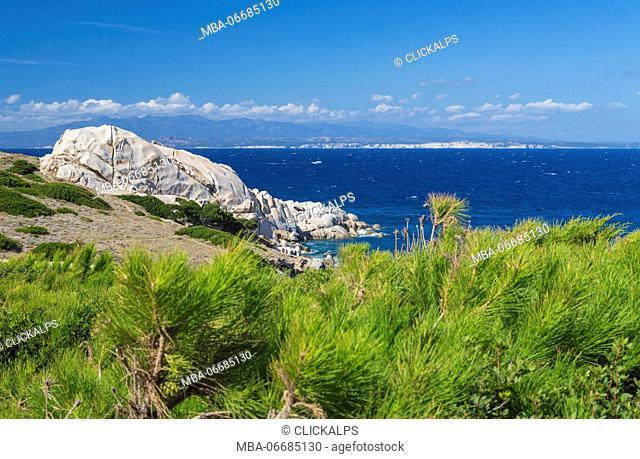 Green plants frame the pristine blue sea and cliffs Capo Testa Santa Teresa di Gallura Sassari Province Sardinia Italy Europe