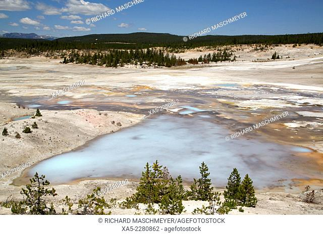 Porcelain Basin, Norris Geyser Basin, Yellowstone National Park, Wyoming, USA