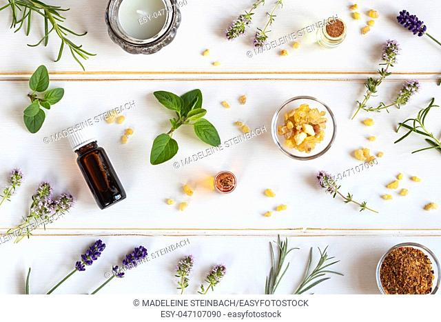 Bottles of essential oil with frankincense, oregano, lavender and other fresh herbs on a white background