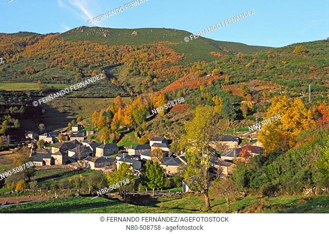 Autumn in Suarbol, Los Ancares, León province, Castilla y León. Spain