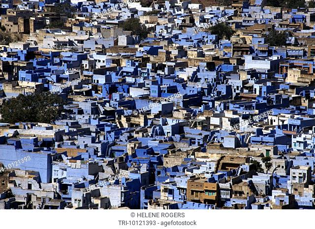 Jodhpur India Blue Houses Brahmin's Houses