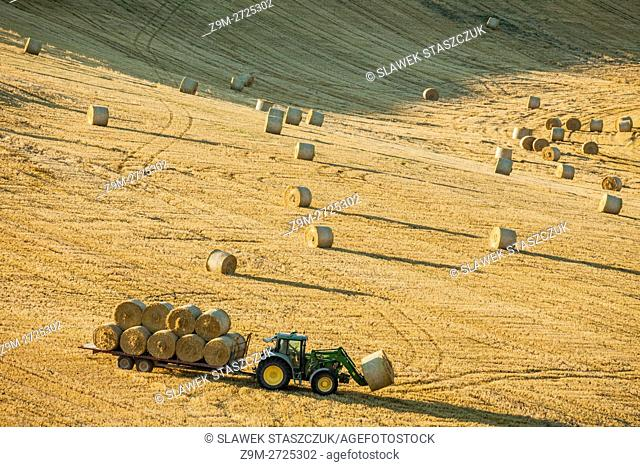 Harvest on the fields of South Downs National Park near Brighton, East Sussex, England
