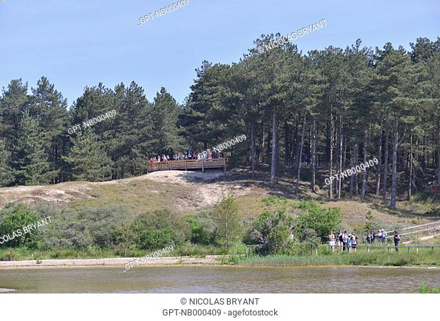 PARK OF THE MARQUENTERRE, NATURAL ORNITHOLOGICAL RESERVE, BAY OF SOMME, PICARDY, FRANCE