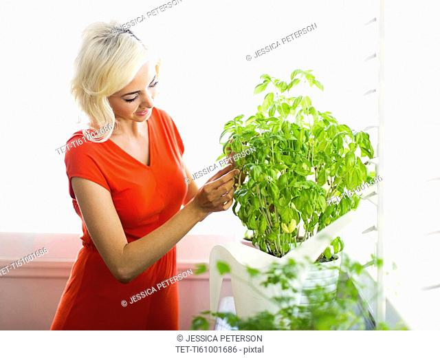 Woman red dress touching potted plant