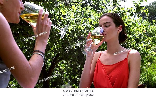 Two female friends drinking glass on wine