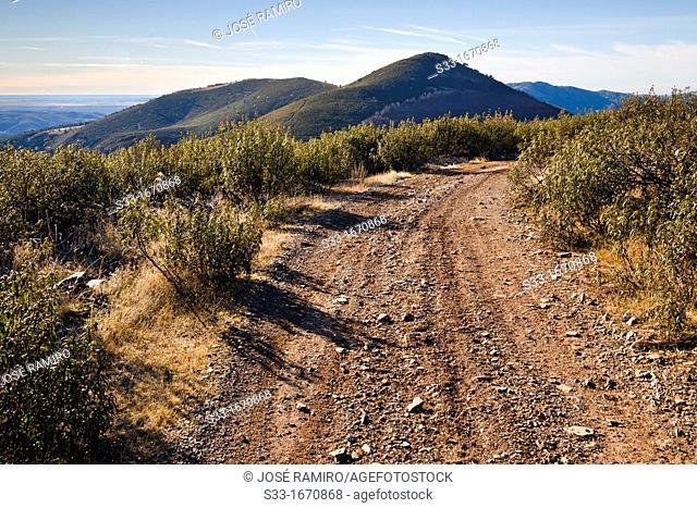 Torrejón hill in the Sierra Norte  El Atazar  Madrid  Spain