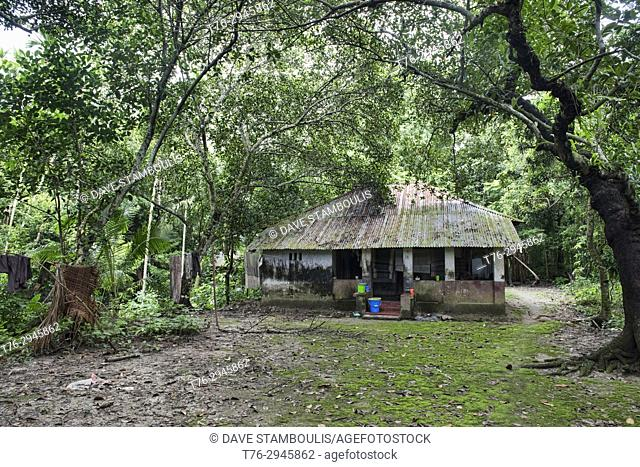 Quiet home in the forest, Bagerhat, Bangladesh