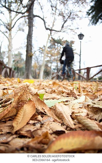 Retiro Park in autumn, Madrid, Spain