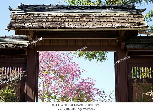 Japanese friendship garden inside Balboa park, San Diego, California