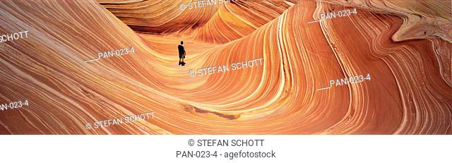 The Wave, Coyote Buttes, Pariah, Utah, USA