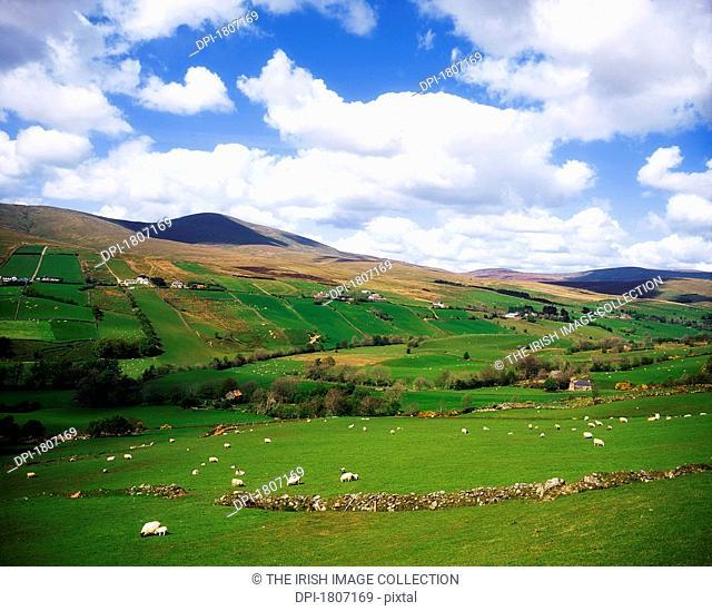 Sperrin Mountains, County Tyrone, Ireland