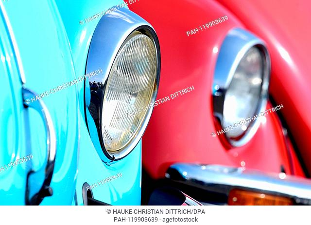 Two Volkswagen Beetle at the Maikaefertreffen (May Beetle Meeting) in Hanover (Germany), 01 May 2019. Fans and owners of Beetles and VW Transporters got...