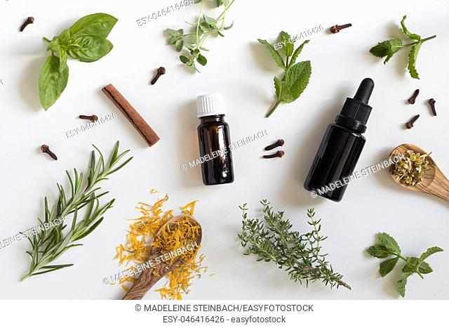 Two bottles of essential oil with a selection of herbs on a white background - peppermint, basil, thyme, rosemary, cinnamon, clove, oregano, chamomile